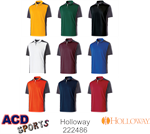 Division Adult Polo Holloway 222486
