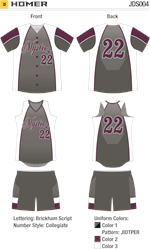 Homer Sublimated Fastpitch Uniform Alleson Athletic