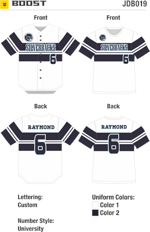 Boost Sublimated Baseball Jersey Alleson Athletic